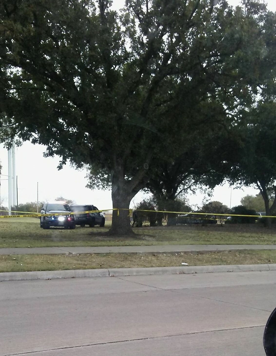Garland Tx – Body Found Hanging In A Tree – What's in your cup?